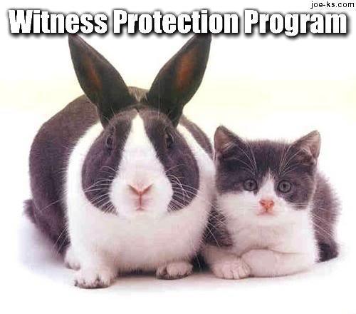 witness-protection-program2.jpg?w=620